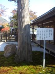 Nagatoro19
